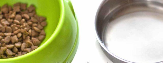 Miski dla psa tanio; miski dla psów na stojaku; miskimetalowe dla psa; sklep zoologiczny online; DuzePsy.pl