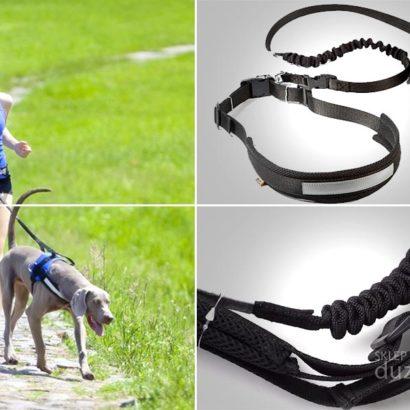 Pas do biegania z psem, pas do biegania z psem Dingo smycz z amortyzatorem, pas do biegania z husky, smycz do biegania z psem