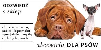 Akcesoria dla dużego psa