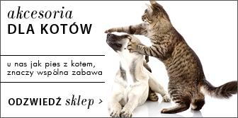 Akcesoria dla kota