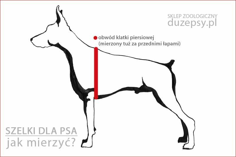 Szelki dla psa jak mierzyć; szelki dla psa jak dobrać rozmiar; szelki dla psa jakie wybrać; szelki dla psa sklep; szelki dla dużego psa; sklep zoologiczny internetowy; duzepsy.pl; szelki dla psa amstaff; szelki dla psa boksera; szelki dla owczarka niemieckiego