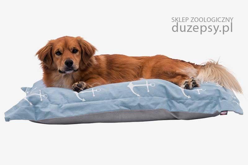 Legowisko dla psa poduszka Trixie; legowisko dla średniego psa; legowisko dla psa sklep; Legowiska dla psów sklep; legowisko dla psa boksera; legowisko dla dużego psa; legowisko dla psa 70x100; legowisko dla psa goldena; legowisko dla psa labradora; modne legowisko dla psa; legowisko dla psa beagle; legowiska dla psa średniego; sklep zoologiczny; duzepsy.pl