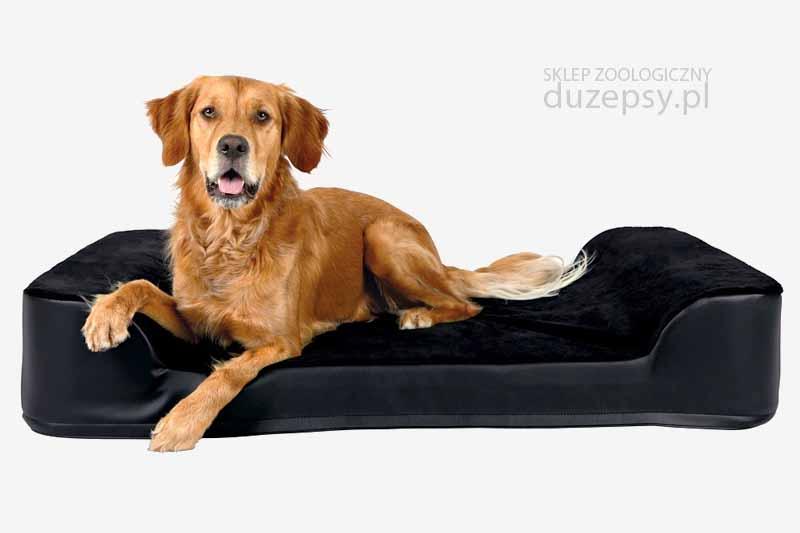 Legowisko ortopedyczne dla psa z pianki Memory; legowiska ortopedyczne dla psów; Legowisko dla starszego psa; miękkie legowisko dla psa; legowisko memory; legowisko z materacem memory; legowiska ortopedyczne; wygodne legowisko dla psa; sklep zoologiczny; duzepsy.pl; Warszawa
