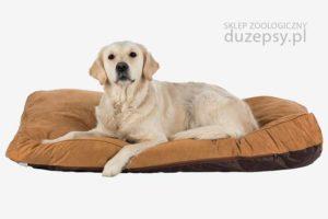 Legowisko dla dużego psa, materac dla dużego Trixie; legowisko dla psa 120 cm, legowisko dla psa sklep, legowiska dla psów sklep; materac dla psa; legowisko dla psa owczarek niemiecki; legowisko dla psa labradora; legowisko dla psa 100x80,legowiska dla psa sklep zoologiczny; duzepsy.pl;