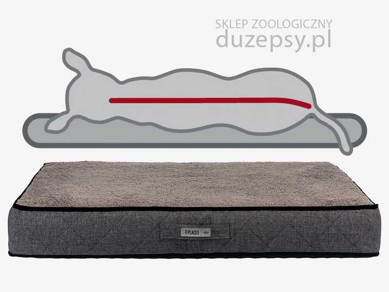Legowisko ortopedyczne dla dużego psa; legowisko dla psa memory szare; materac ortopedyczny dla dużego psa; legowisko dla psa memory foam; legowisko dla psa 140 cm; legowiska dla psa olbrzymiego; legowiska dla psa memory szare; legowiska ortopedyczne dla psów; legowisko ortopedyczne dla psa xxl; legowisko ortopedyczne dla psa; gruby materac dla dużego psa; legowisko dla psa sklep; legowisko dla psa trixie; legowisko dla bardzo dużego psa; legowiska dla dużych psów; legowisko dla psa hovarta; legowiska dla starszych psów; legowisko ortopedyczne dla psa xl; legowisko dla psa giganta; legowisko dla psa boksera; legowisko dla psa duże; legowisko dla psa golden retriever; legowisko dla psa husky; legowisko dla psa labradora; legowisko dla psa łatwe do prania; legowisko dla psa łatwe w czyszczeniu; legowisko dla psa owczarka niemieckiego; legowisko dla psa premium; legowisko dla psa rozbieralne; legowisko dla psa szare; legowisko dla psa ze ściąganym pokrowcem; sklep zoologiczny; DuzePsy.pl
