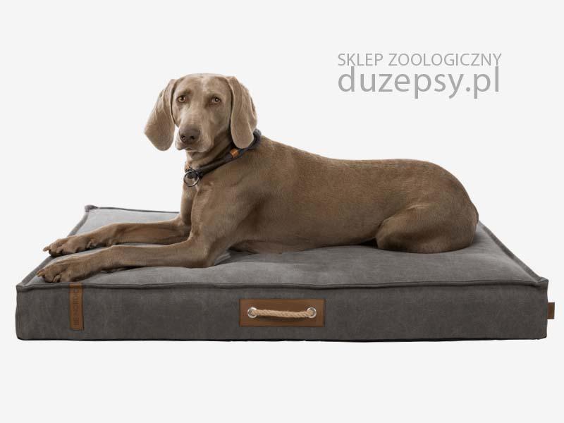 materac dla psa dużego; legowisko dla psa szare; legowisko dla dużego psa; legowisko dla labradora; legowiska dla dużego psa; legowiska dla psa owczarka niemieckiego; materac dla dużego psa; materace dla psów; legowisko dla średniego psa; legowisko dla psa sklep; legowisko dla psa 100x70; legowiska dla psa trixie; legowisko dla psa beagle; legowisko dla psa boksera; wygodny materac dla psa; materac piankowy dla psa; matetac dla psa duży; legowisko dla psa 60x80