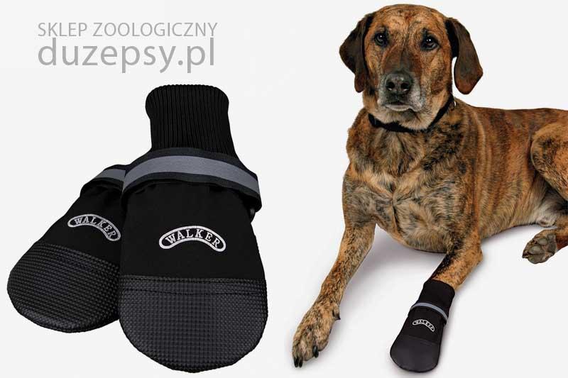buty ochronne dla psa wodoodporne; buty dla dużych psów; buty ochronne dla psów; buty dla labradora; buty dla psa tanio; buty dla psów Walker; buty neoprenowe dla psów; duże buty dla psa; DuzePsy.pl; mocne buty dla psa
